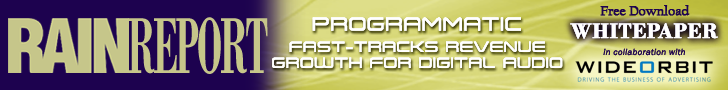Programmatic Fast-Tracks Revenue whitepaper download 728x90
