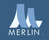Merlin logo canvas