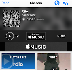 Shazam and SoundHound already have Apple Music integrations