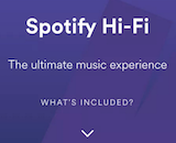 Spotify Hi-Fi canvas